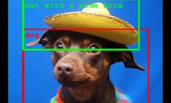 Google coraz lepiej rozpoznaje przedmioty na zdjęciu