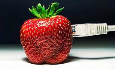 Ile waży Internet?