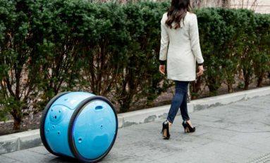 Gita, osobisty robot-tragarz