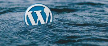 Korzystasz z WordPress? Koniecznie sprawdź tego bloga!