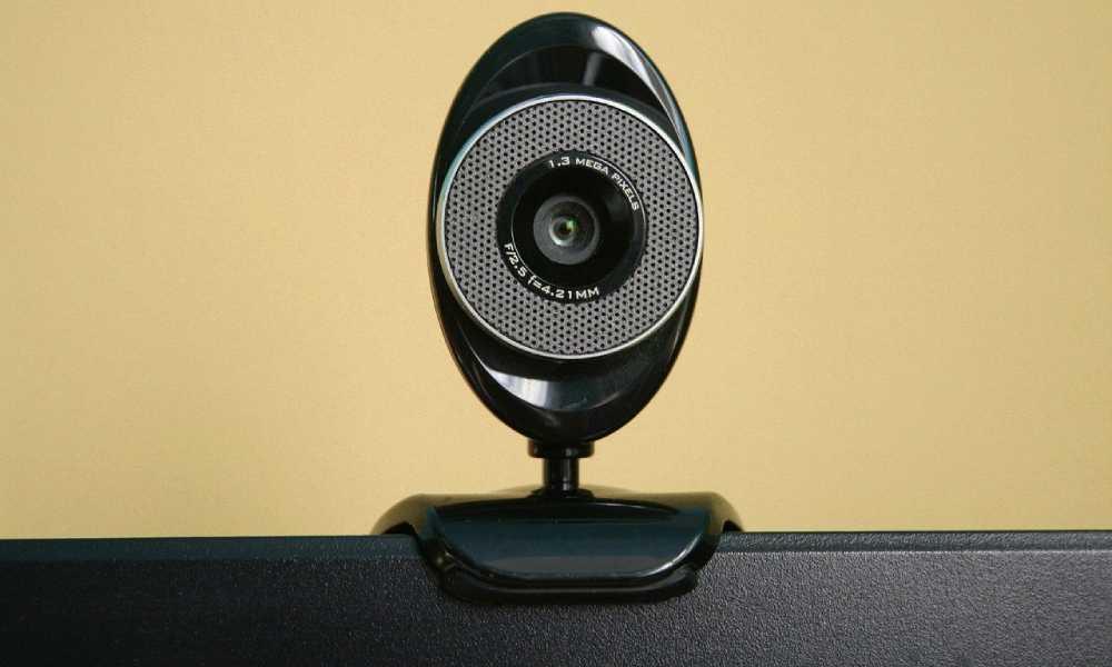 Zastosowanie współczesne kamer internetowych